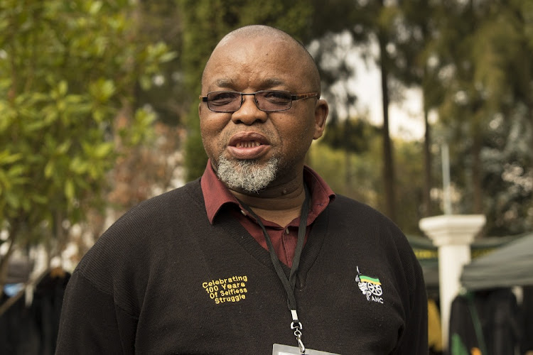 Gwede Mantashe. Picture: SOWETAN