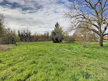 terrain à La Neuville-aux-Bois (51)