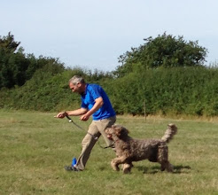 Photo: Brian Labradoodle and Paul in the Spoon Race Slalom