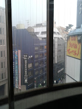 Photo: View from the capsule hotel (only windows were in the elevator)