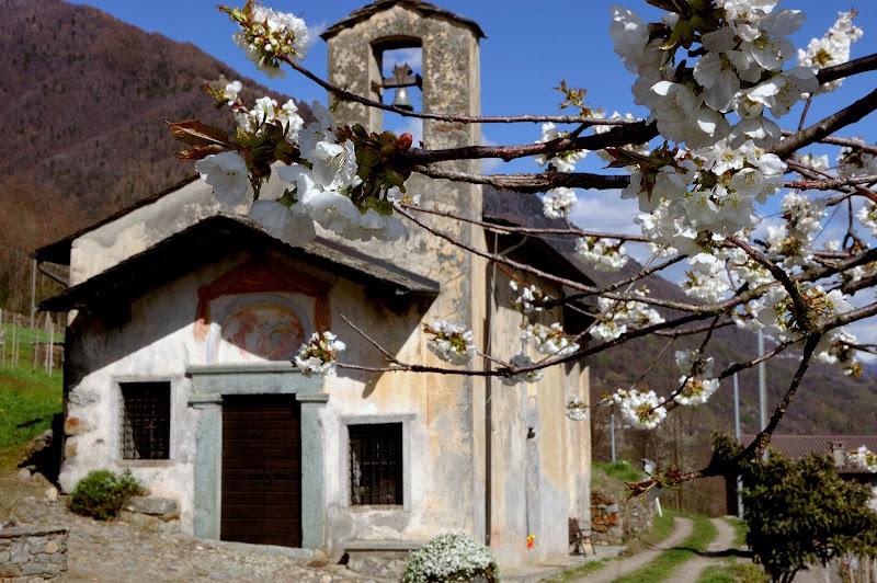 Primaverra alla chiesetta di San Lorenzo di benny48
