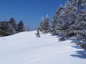 Photo: 雪景色、四阿山中腹にて
