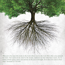 Photo: ''Blessed is the man who trusts in the Lord, whose trust is the Lord. He is like a tree planted by water, that sends out its roots by the stream...'' Jeremiah 17:7-8 ESV  ''Blessed is the man who trusts in the Lord, whose trust is the Lord. He is like a tree planted by water, that sends out its roots by the stream, and does not fear when heat comes, for its leaves remain green, and is not anxious in the year of drought, for it does not cease to bear fruit.'' Jeremiah 17:7-8 ESV  Jeremiah 17 ESV; https://www.biblegateway.com/passage/?search=Jeremiah+17&version=ESV  Jeremiah 17 ESV Audio; https://www.biblegateway.com/audio/mclean/esv/Jer.17  Message Psalm 1 ESV; https://sites.google.com/site/biblicalinspiration1/biblical-inspiration-1-series-celebrating-the-word-of-god-2014---celebrating-the-joy-of-changed-lives-what-do-these-stones-mean-the-moody-church