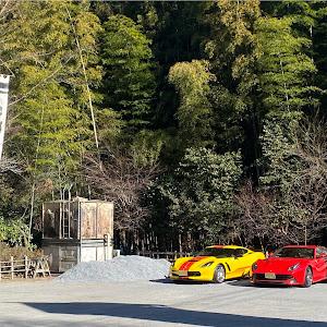 F12ベルリネッタのカスタム事例画像 たんちゃんさんの2021年01月09日10:01の投稿