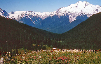 Photo: 42. View of Glacier Peak from Buck Creek Pass, showing characteristic forests, meadows, and glaciers. (Glacier Peak is 10,450 feet in elevation)