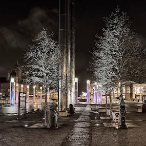 Cardiff Bay... by Griff Johnson - City,  Street & Park  Historic Districts ( nightshot, wales, fountain, trees, cardiff, , #GARYFONGDRAMATICLIGHT, #WTFBOBDAVIS )