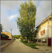 "Photo: Turda - Str. Dorobanți, inainte de o ploaie ""zdravana"" - 2018.08.09"