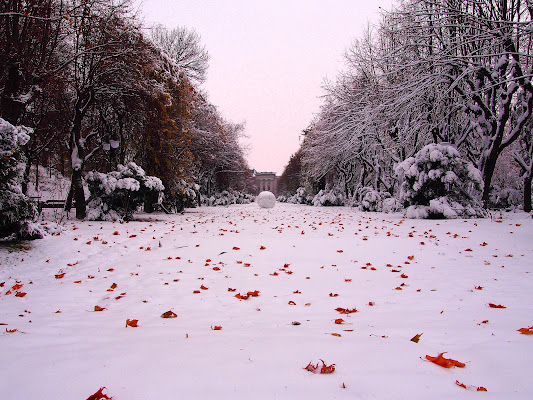 Palla di neve di Rinox