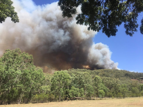 A view of the Bobbiwaa Creek fire from 500m away
