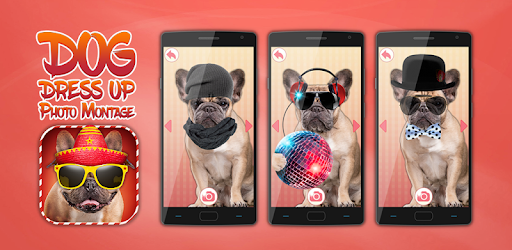 Change the look of your favorite pet in seconds with cool pic editing app!