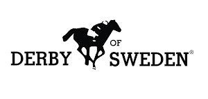 Derby of Sweden