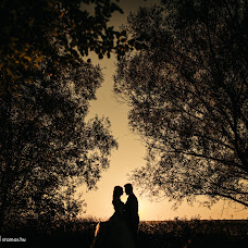 Wedding photographer Tamas Sandor (stamas). Photo of 01.10.2018