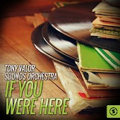 Tony Valor Sounds Orchestra, If You Were Here