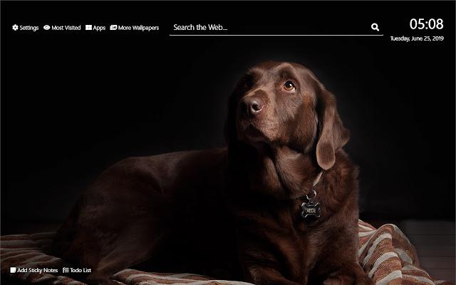 Labrador Wallpaper HD New Tab Theme©