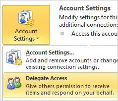 Delegate access in 2010 version