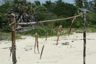 Photo: Pomene. Trockenfisch