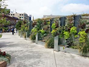 Photo: New(er) gardens outside the station