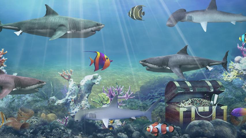 shark aquarium live wallpaper - photo #6