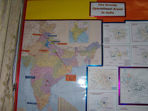 Photo: Map showing the regions in which The Brooke India operates