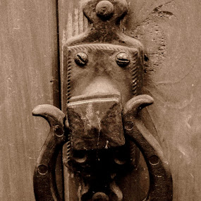 Vintage Knocker by Keith Williams - Products & Objects Industrial Objects ( unmadesugar, handle, vintage, knocker )