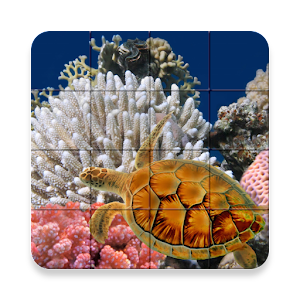 Marine Life Puzzle for PC and MAC