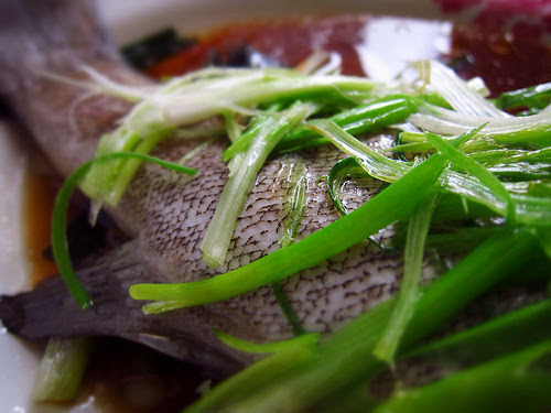 chinese steamed fish, cantonese, classic, steamed fish