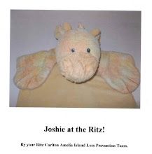Photo: Chris Hurn's son lost his special Joshie on vacation. He was found and returned by the Ritz-Carlton staff but not before he finished his extended vacation! Go to www.504blog.com for the full story!