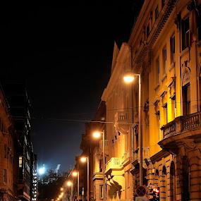 by Zvonimir Cuvalo - City,  Street & Park  Vistas