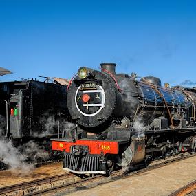 SusanSteamTrain by Rob Vandongen - Transportation Trains
