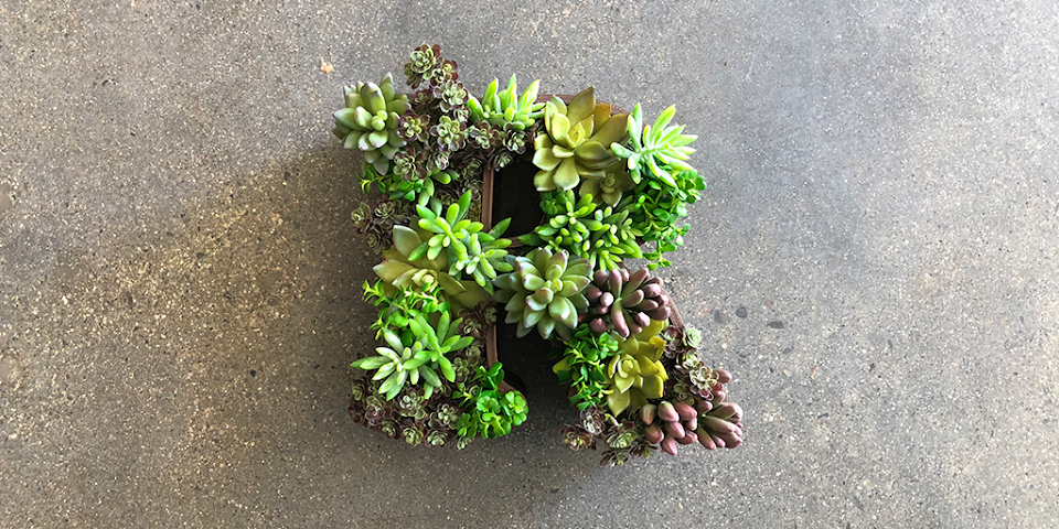 How To: 3D Print and Build a Custom Succulent Wall Hang