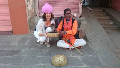 Photo: two poisonous snakes and a street musician :-) http://jarogruber.blogspot.de/2016/02/northern-india.html