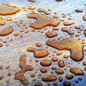 Drops on Wood by Kevin Sullivan - Abstract Fine Art ( abstract, wood, grain, drops )