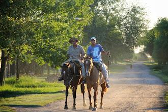 Photo: dieciséis patas en el camino