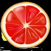덴마크 다이어트 식단