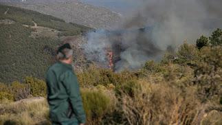 El fuego trepaba ayer, a última hora, por la ladera este del barranco de Carcauz
