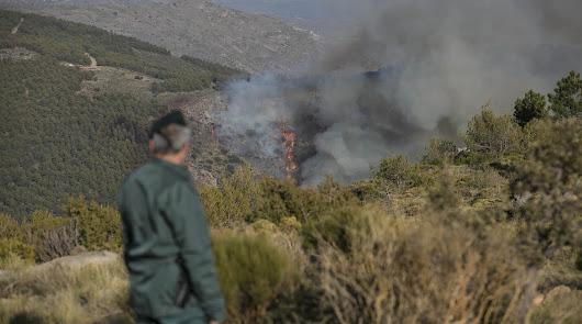 El Infoca da por controlado el incendio forestal de Felix