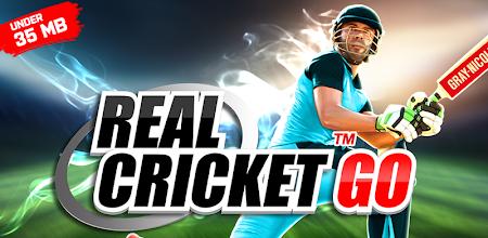 Real Cricket™ GO APK poster