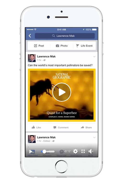 Facebook Ad Size Instant Article Video Ad