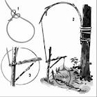 Animal Traps icon