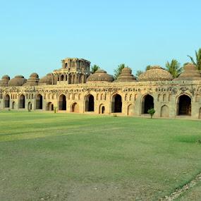 Elephant Stable by Vijayendra Venkatesh - Buildings & Architecture Statues & Monuments
