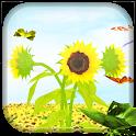 Sunflower 3D LiveWallpaper icon