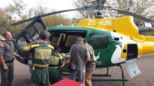 Seven taken to hospital after wooden deck collapses in Kruger Park