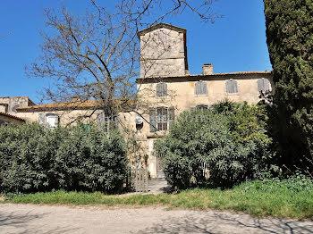 ferme à Arles (13)