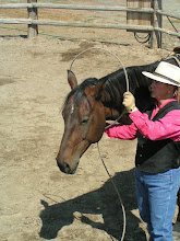 Photo: Taking the lariat loop off is equally important to be mindful. Feed out a medium size loop.