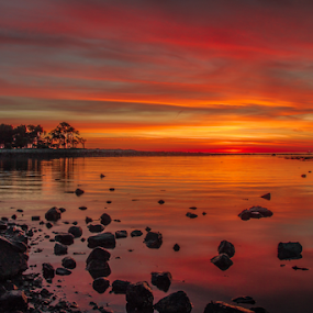 by Michael Otero - Landscapes Sunsets & Sunrises ( green, blue, multi color, contrast, yellow )