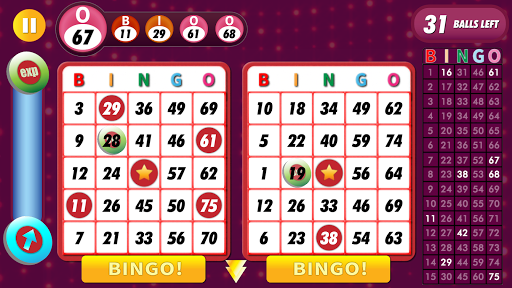 Bingo Classic Game - Offline Free apkpoly screenshots 1