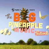 App Big Pineapple Festival version 2015 APK
