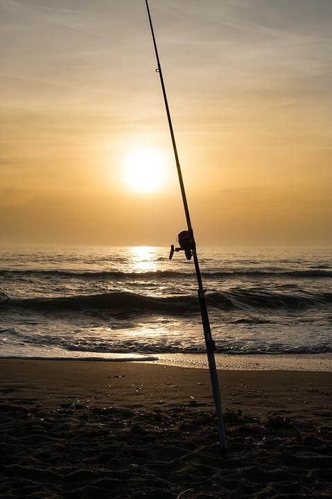 fishing wallpapers android apps on google play