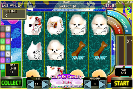 Cute Pets FFS Fun Free Slots ™ - náhled
