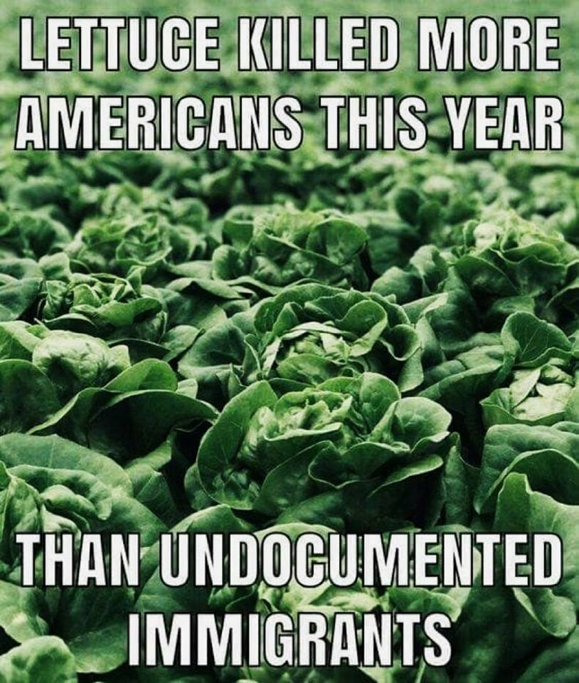 Did lettuce kill more Americans than undocumented immigrants?